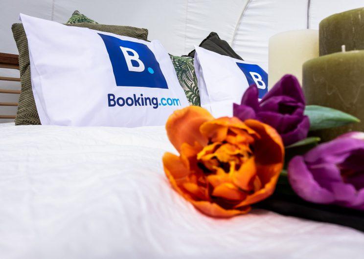 Booking.com ชวนคุณสัมผัสประสบการณ์พักค้างคืนท่ามกลางทุ่งดอกทิวลิปที่ดินแดนดัชต์