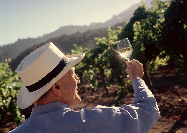 CALIFORNIA DREAMING WINE_Memag Online